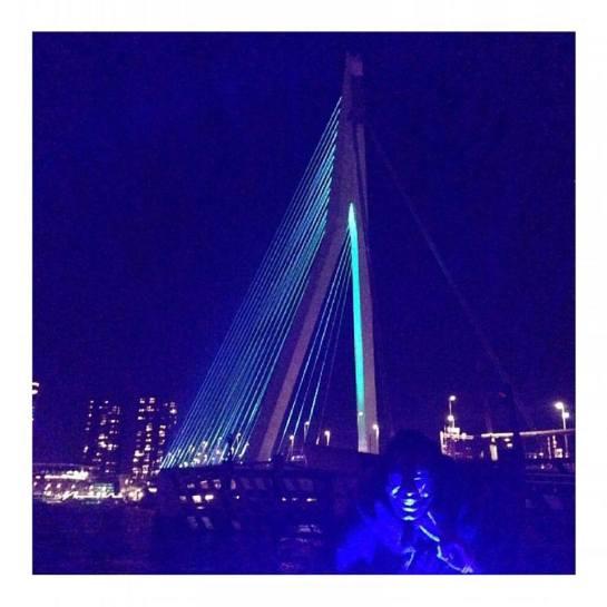 Rotterdam's Erasmus Bridge.jpg